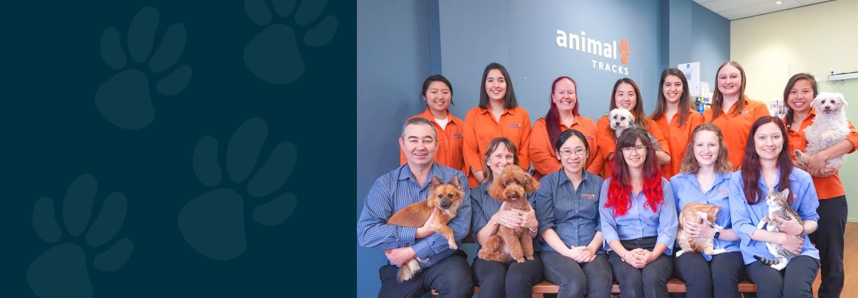 Animal Tracks Team